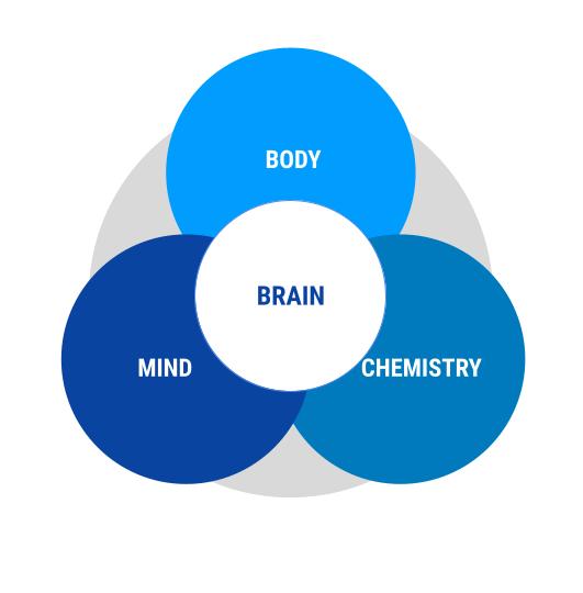 Brain Body Mind Chemistry