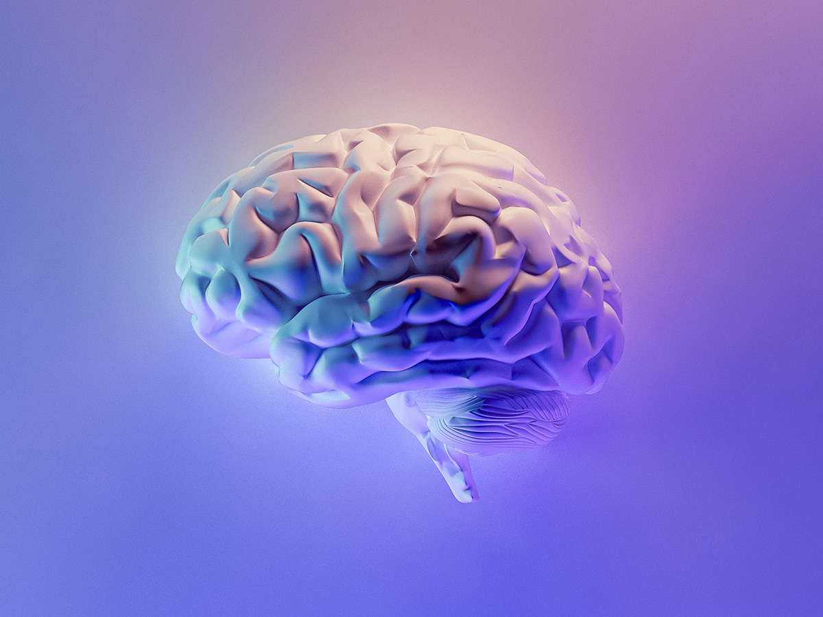 image of a purple and blue brain